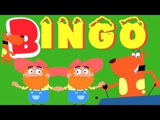 bingo perro canción | la rima de bingo para niños | childrens rimas canción