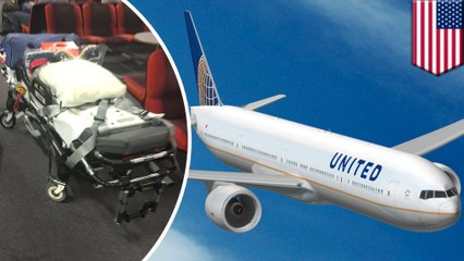 Turbulence : 12 blessés sur un vol d'United Airlines