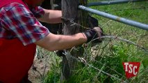 How to Stretch Barbed Wire Fencing-vr51nPhTLqw
