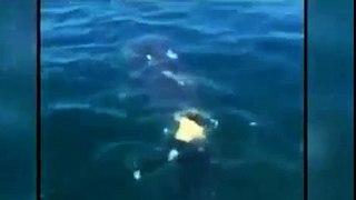 Thanh niên liều lĩnh nhảy xuống biển cư