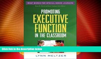 Big Deals  Promoting Executive Function in the Classroom (What Works for Special-Needs Learners)