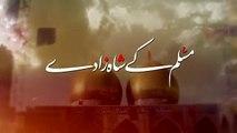 Muslim Kay Shahzaday  Mir Hasan Mir  Noha 2016 2017 l 1438 Hijri Mir Hasan Mir Nohay