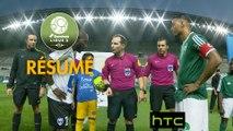 Red Star  FC - Chamois Niortais (0-1)  - Résumé - (RED-CNFC) / 2016-17