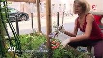 Jardins : quand la nature s'invite en ville