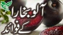 Aloo Bukhara Ke Lajawab Faide Urdu Hindi | Plum Benefits in Urdu