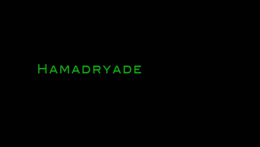 Hamadryade