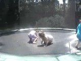 Sadie and Friends on the Trampoline