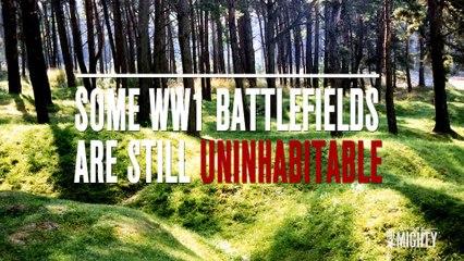 Military Insider   WWI Battlefields