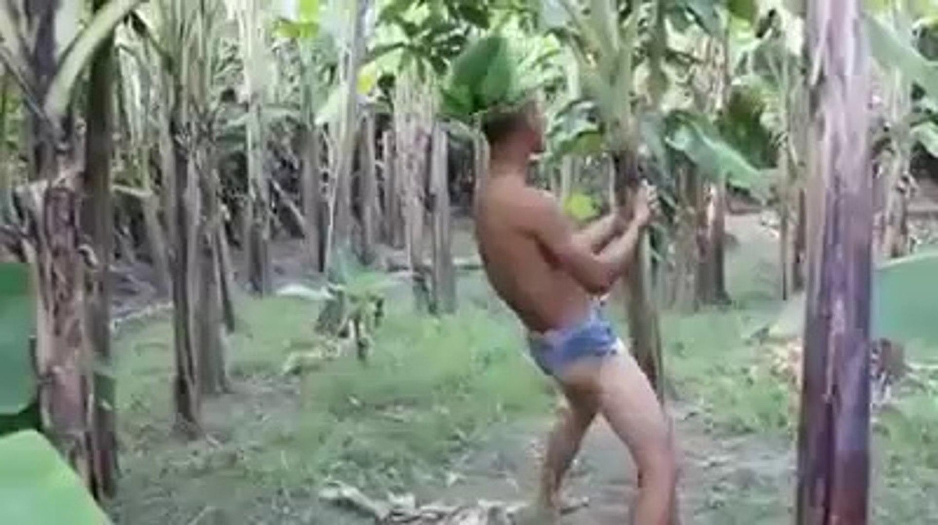 Lucu Atau Bodoh Jo Heboh Sampe Manjat Pohon Bikin Ngakak