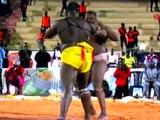 REPLAY - JELL BI GRIS BORDEAUX VS MODOU LO dans L' oeil du Tigre du 27 Septembre 2016