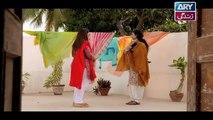 Haal-e-Dil Ep 15 - ARY Zindagi Drama