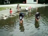 Trempette lac de lourdes