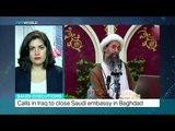 Interview with Negar Mortazavi on Saudi executions