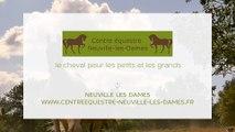 Centre équestre de Neuville-les-Dames, cours d'équitation et pension pour chevaux et poneys