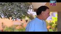 Haal-e-Dil Episode 17 on Ary Zindagi 29th September 2016