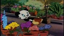 andy panda o praga de praga