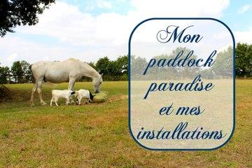 Mon paddok paradise et mes installations (2016)