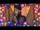 Hafiz Ali Raza Qadri Mehfile Naat 28 March 2016