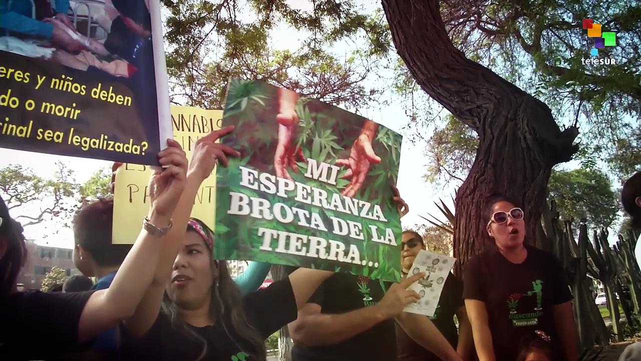 Peruvian Parents Protest for Medical Marijuana