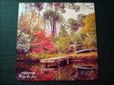 MCENROE.''RUGEN LAS FLORES.''.(CABALLOS Y PALMERAS.)(12'' LP.)(2015.)