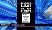FAVORIT BOOK Austin Sarat: Divorce Lawyers and Their Clients : Power and Meaning in the Legal