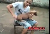 boy very Bad this animal - Funny Videos - Funny Clips - Funny Movies - Funny Animal