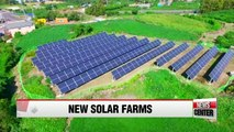 Jeju farmers replacing tangerine trees with solar panels for stability and profit