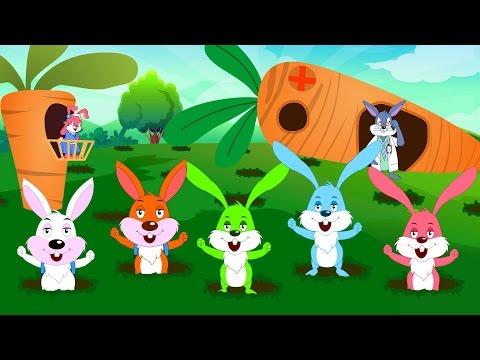 Five Little Rabbits | Nursery Rhymes