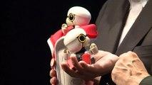 Presentan robot parlante para acompañar humanos