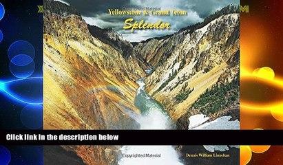 Must Have PDF  Yellowstone   Grand Teton Splendor  Free Full Read Best Seller