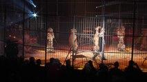 17ème édition du Festival International du Cirque du Val d'Oise