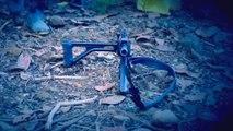 FARC reiteran que renunciarán a las armas y solo usarán la palabra