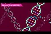 Galactic Hack Tactic - John Lennon - Instant Karma