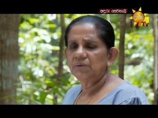 Anduru Sewaneli 06/10/2016 - 43
