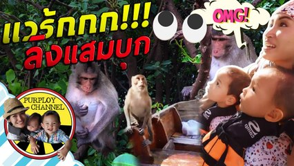 แวร้กกก!!! ลิงแสมบุก