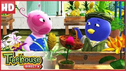 The Backyardigans in Garden Cirty! | Treehouse Direct Clips