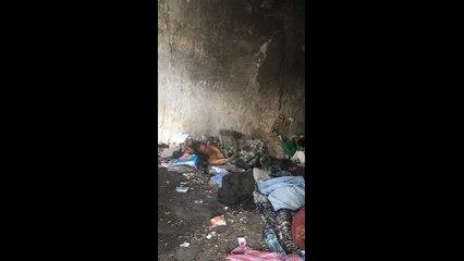 Manouba : Mobilisation générale pour une vieille dame vivant dans les déchets