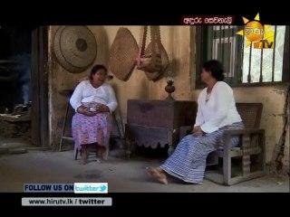 Anduru Sewaneli 10/10/2016 - 45