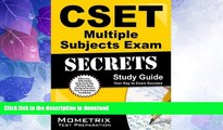 READ  CSET Multiple Subjects Exam Secrets Study Guide: CSET Test Review for the California
