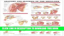 [PDF] Anatomy and Injuries of the Shoulder Anatomical Chart Full Online