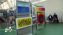 Salon de la Sculpture et de la Peinture 2016 d'Yvré le Pôlin (Sarthe)