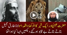 Emotional Story of Eisa A.S and A Lion Maulana Tariq Jameel Bayyan 2016