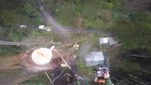 Couper des arbres suspendu à des dizaines de metre du sol : Bucherons de l'extreme