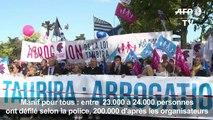 Manif pour tous : plusieurs dizaines de milliers de manifestants