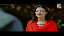 Deewana Episode 41 Full HD HUM TV Drama 13 Oct 2016(4)dramas online, dramas pakistani, dramas central, dramas songs, dramas ost, dramas online ary digital, dramas online hum tv, dramas of ary digital, dramas 2016, dramas songs pakistani, dramas, dramas of