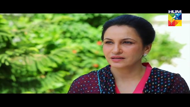 Be Aitebaar Episode 46 Full HD HUM TV Drama 4 October 2016