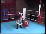 Arm lock, arm breaker submission wrestling female. Women's professional wrestling figure 4 headlock