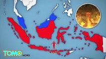 Le smog venant des feux de forêt en Indonésie aurait tué 100 000 personnes