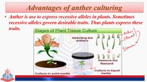 Anther Culturing, Advantages, Suspension Culture, Uses, Summary of Tissue Culture Methods