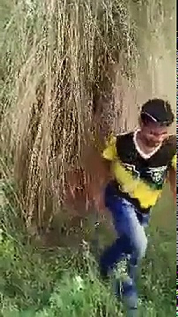 New Funny Videos 2016